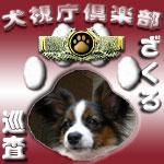 犬視庁ざくろ巡査
