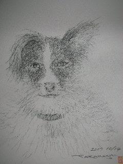 パピレンの肖像